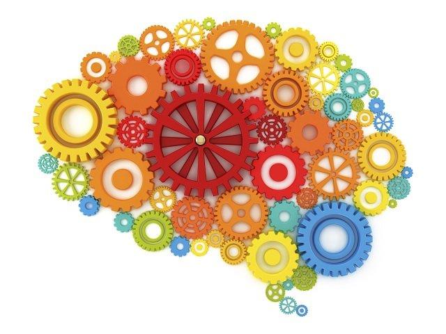 Brain-in-cogs